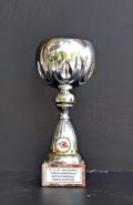2007 Kupalar