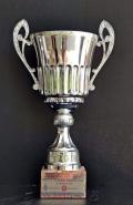 2008 Kupalar