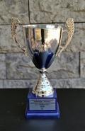 2010 Kupalar