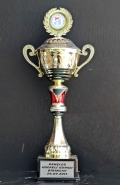 2011 Kupalar