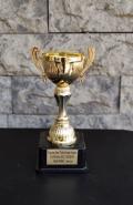 2019 Kupalar