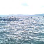 deniz-kuregi-sinop-2011-05