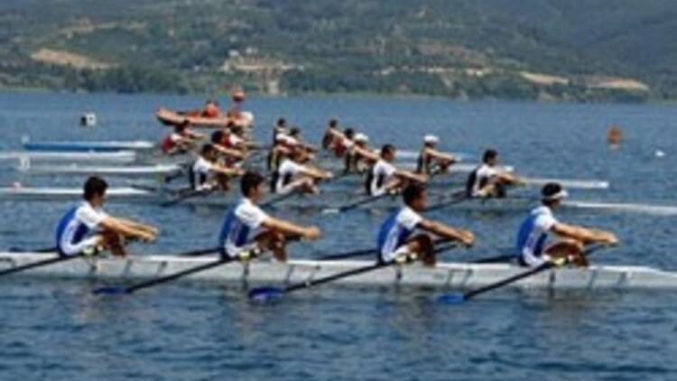 Sinop'ta deniz küreği heyecanı